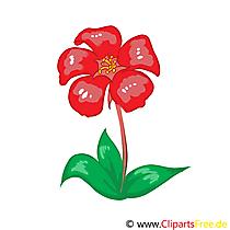 Bedava kırmızı çiçek küçük resim