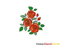 Clipart di rose rosse gratis