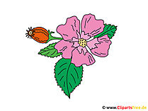 Obraz fioletowy - Clipart