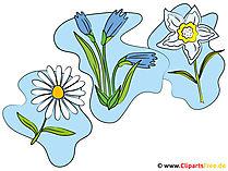 Kır çiçekleri clipart