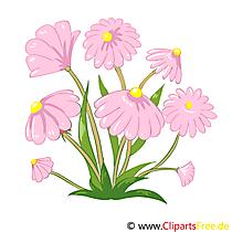 Çerçeve içinde kır çiçekleri - Image, Clip Art, Graphic, Illustration