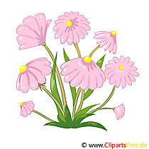 Wilde Blumen im Feld Bild, Clip Art, Grafik, Illustration