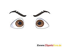 Braune Augen Bild, Zeichnung, Grafik, Clipart