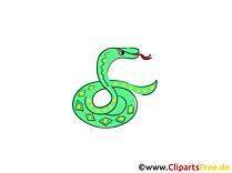 Snake Clip Art free