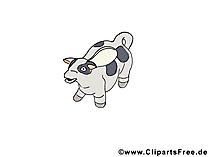 Spardose Kuh Bild, Clipart, Illustration, Grafik kostenlos