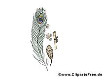 孔雀蝶画像、クリップアート、画像、漫画、無料イラスト