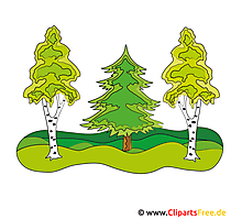Wald Clipart