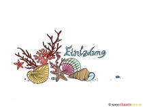 Clipart zeeschelpen