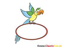 Papegaai met schild voor etikettering
