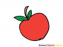Roter Apfel Bild, Clipart, Illustration, Grafik, Zeichnung kostenlos
