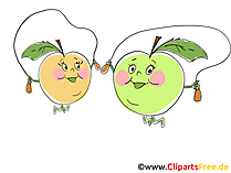 Äpfel Cliparts