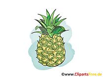 Ananas Illustration, Bild, Clipart kostenlos