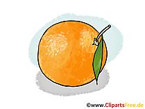 Apfelsine Illustration, Bild, Clipart kostenlos
