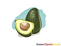 Avocado illustratie, foto, clipart gratis