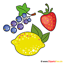 Beeren Cliparts