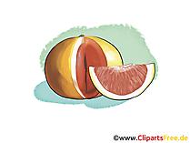 Blutorange Illustration, Bild, Clipart kostenlos