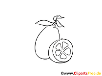 Clip Art Citroen zwart en wit