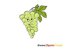Clipart Weintrauben