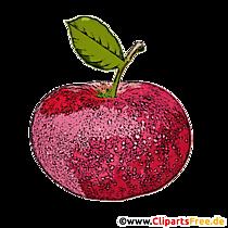 Imagine de fructe, ilustrație, clip art în rezoluție înaltă pentru imprimare