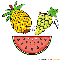 Früchte Cliparts