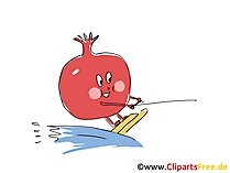 Granatapfel Clipart, Bild, Cartoon gratis