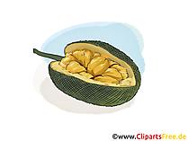 Gujabe illustratie, afbeelding, gratis clipart