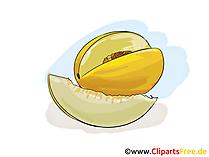 Honigmelone Illustration, Bild, Clipart kostenlos