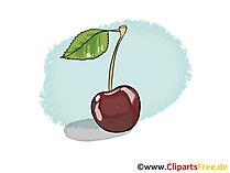 Kirsche Illustration, Bild, Clipart kostenlos