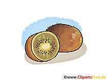 Kiwi Illustration, Bild, Clipart kostenlos