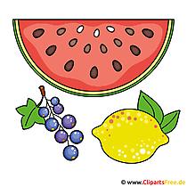 Watermeloen clipart