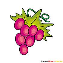 Weintrauben Clip Art