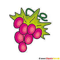 Druiven Clip Art
