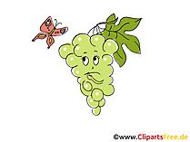 Weintrauben Clipart, Bild, Cartoon gratis