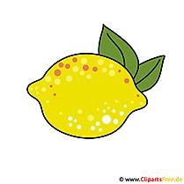 Zitrone Bild