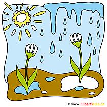 Fruehling Bild gratis Sonne
