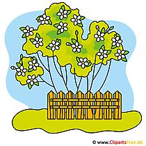 Garten Cliparts kostenlos