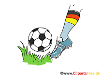 Free Clipart Fussball