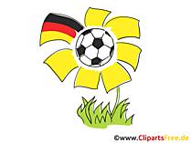 Fussball-Blume - Cliparts Fussball