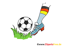 Fussball Clipart und Illustrationen