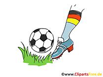 Fussball Clipart und Illustrationen