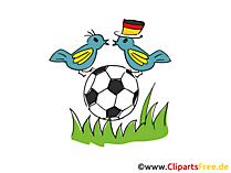 Fussball Grafik, Clipart, Bild, Cartoon