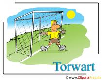 Torwart Illustration Fussball gratis