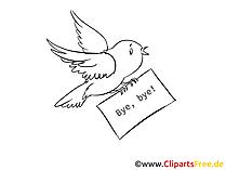 Vogel Bild zum Ausmalen kostenlos