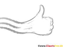 Hand mit Daumen hoch Bild