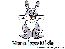 Tavşan resmi