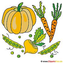 Bilder Gemüse kostenlos