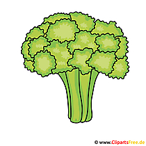 Broccoli Image - vector illustraties