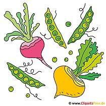Sebze görüntüsü - Clipart
