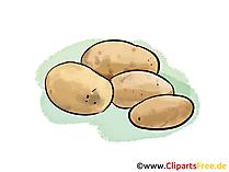 Patates, hasat küçük resim, illüstrasyon, resim