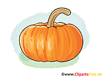 Kürbis Illustration free, Bild, Clipart